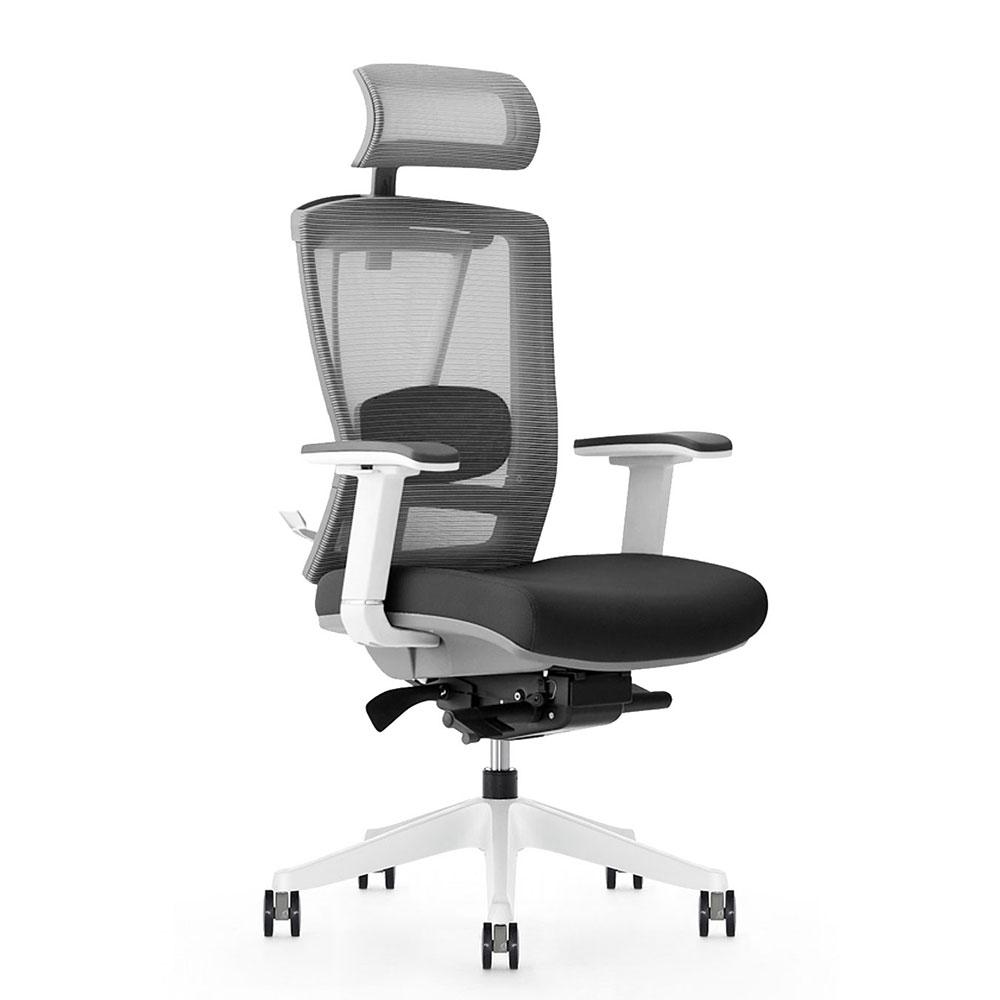 ergochair 2 ergonomic chair